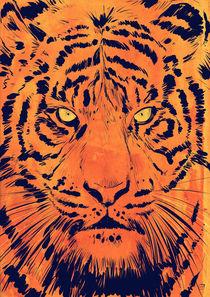 'Tiger' von Giuseppe Cristiano