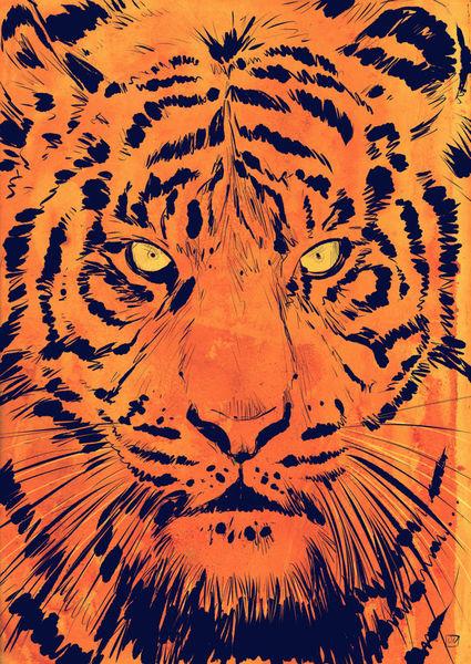 Tiger-colfx-large
