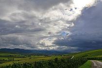 Das Markrgräflerland und der Schwarzwald von Ingo Laue