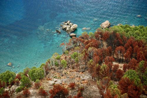 Clear-blue-sea
