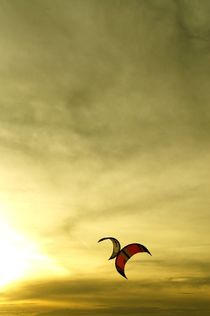 two kites kissing make a butterfly - Zwei küssende Drachen werden ein Schmetterling by mateart