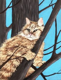 Cat on a Tree by Anastasiya Malakhova