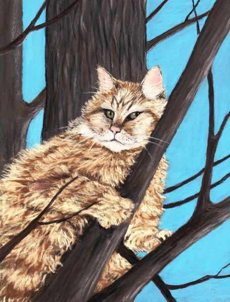 Cat-on-a-tree-anastasiya-malakhova