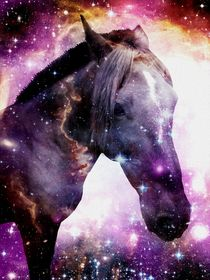 Horse in the Small Magellanic Cloud by Anastasiya Malakhova
