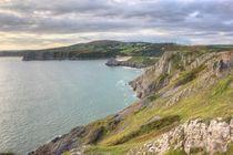 Gower Coastline by Dan Davidson