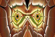 Barn Owl by Anastasiya Malakhova