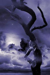 'Cold Blue Night' von CHRISTINE LAKE