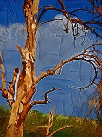 naked tree  von Anat  Umansky