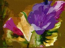 painted flowers  von Anat  Umansky