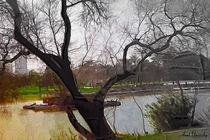 urban park by the river von Anat  Umansky