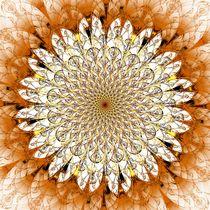 Bright Flower von Anastasiya Malakhova