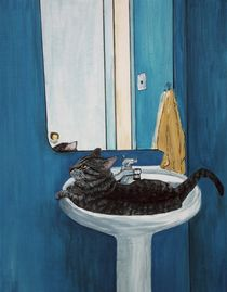 Cat in a Sink von Anastasiya Malakhova
