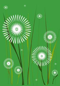 Dandelions von Anastasiya Malakhova