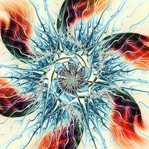 Fire Vs Ice von Anastasiya Malakhova