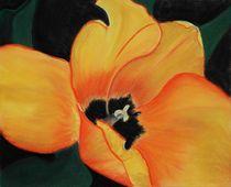 Golden Tulip von Anastasiya Malakhova