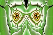 Green Owl by Anastasiya Malakhova