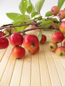 Herbstliche Dekoration mit Zieräpfeln von Heike Rau