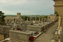 Friedhof by Franziska Giga Maria