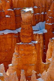 Bryce Canyon 17 gestreckte Tonne auf Stein rötlich mit Schneeaufsatz Poster hochkant von Martin Pepper