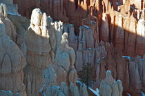 Bryce Canyon 12 Figurengruppe Licht und Schatten von Martin Pepper