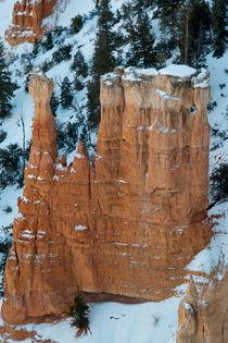 Bryce Canyon 9 Steinformation vor Schneehang hochkant (Poster) von Martin Pepper