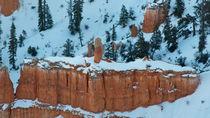 Bryce Canyon 8 Sandsteingruppe Fässer vor Tannen im Schnee von Martin Pepper