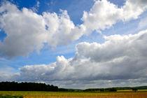 Wendlandhimmel by J.A. Fischer