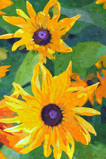 Yellow Flowers II von David Pringle