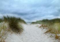 beach view by Franziska Rullert