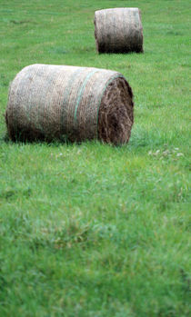 hay bale by Jens Berger