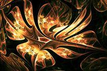 Phoenix Nest by Anastasiya Malakhova