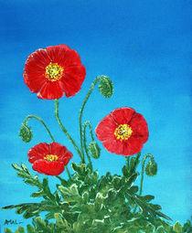 Poppies on Blue von Anastasiya Malakhova