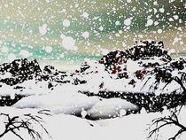 Snowfall-anastasiya-malakhova
