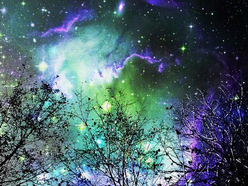 Starry-night-anastasiya-malakhova