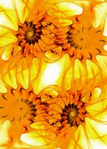 Sunflowers von Anastasiya Malakhova