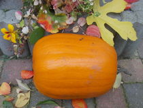 Pumpkin and Leaves by Jenny Unger