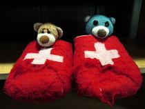 Zwei Bären in der Schweiz by Olga Sander