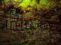 Weg durch den Sumpf by Heidrun Carola Herrmann