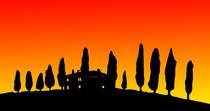 Sonnenuntergang in der Toskana von Petra Koob