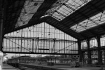 Gare d'Austerlitz by alina8