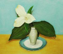 White Trillium by Anastasiya Malakhova