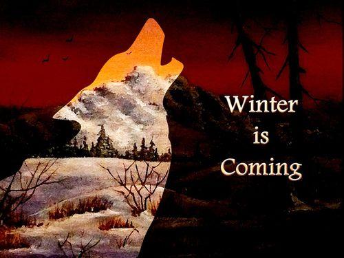 Winter-is-coming-anastasiya-malakhova