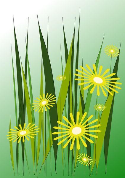 Yellow-daisies-anastasiya-malakhova