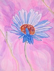 Alpine Daisy by Christine Chase Cooper
