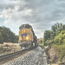 Running the Rails von Dan Richards
