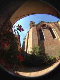 Basilica di Santa Maria Maggiore, Bologna  by Azzurra Di Pietro