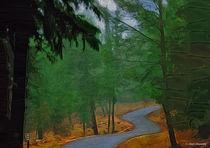 my path  by Anat  Umansky