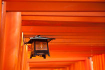 Fushimi Inari Shrine by holka