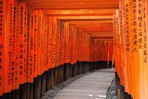 Red Tori Gate von holka
