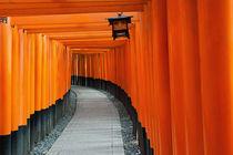 Fushimi Inari von holka